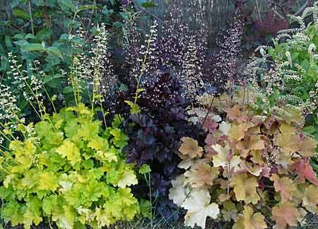 Design petit jardin anglais saint denis 1713 petit saint denis - Petit jardin en pot saint denis ...