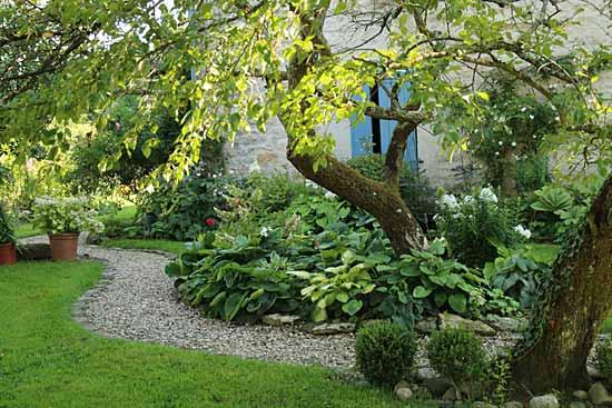 des arbres dans des petits jardins a quelles conditions arrosoirs et s cateurs. Black Bedroom Furniture Sets. Home Design Ideas